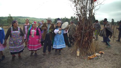 21C_Show116_Thumb_Mapuche.jpg